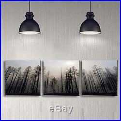 Set Of 3 Black Forest Stretched Canvas Prints Framed Wall Art Decor Painting AU